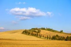 Ackerland Toskana, Kreta Senesi, Zypressenbaumstraße, Grünfelder. Italien. Lizenzfreies Stockfoto