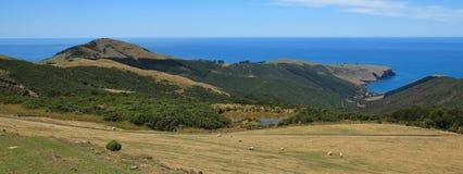 Ackerland und blauer Pazifik Stockfotos