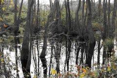 Ackerland und Flut Lizenzfreies Stockbild