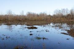 Ackerland und Flut Lizenzfreie Stockfotos
