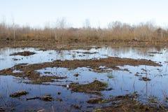 Ackerland und Flut Stockfotografie