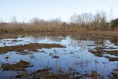 Ackerland und Flut Lizenzfreie Stockfotografie