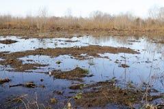 Ackerland und Flut Stockfoto
