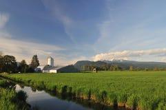 Ackerland und goldener Ohr-Berg Stockbilder