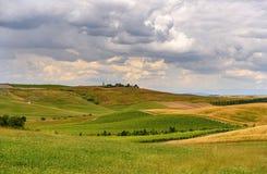Ackerland und Grünfeld in Toskana, Italien Stockbild