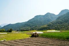 Ackerland und Hügel Stockbilder