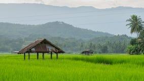 Ackerland und Hütte von Leuten in der Landschaft Stockbilder
