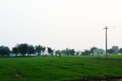 Ackerland und Pole von Elctricity stockfotos