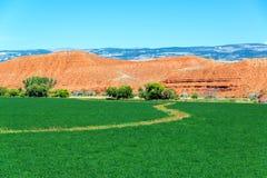 Ackerland und rote Hügel Stockfotografie