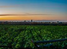 Ackerland- und Stadtlichter, die das gleiche Land teilen Stockfotografie