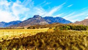 Ackerland und umgebende Berge in der Boland-Region des Westkaps Stockfotografie