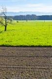 Ackerland und Weiden Stockfotografie