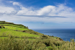 Ackerland und Weiden auf Nordküste Sao Miguel Isla Lizenzfreie Stockfotografie