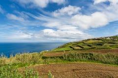 Ackerland und Weiden auf Nordküste Sao Miguel Isla Lizenzfreie Stockbilder