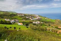 Ackerland und Weiden am Pilar Dorf auf Sao Miguel Is Lizenzfreie Stockfotografie