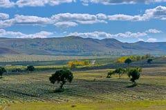 Ackerland und Wolken Stockbild