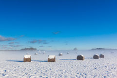 Ackerland unter Schnee Stockbilder