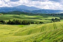 Ackerland in Val-d'Orcia Toskana Lizenzfreies Stockbild
