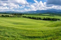 Ackerland in Val-d'Orcia Toskana Stockfotografie