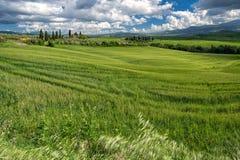 Ackerland in Val-d'Orcia Toskana Lizenzfreie Stockfotografie