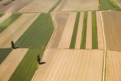 Ackerland in Voijvodina fotografierte von der Luft Lizenzfreie Stockbilder