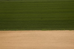 Ackerland in Voijvodina fotografierte von der Luft Stockbild
