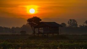 Ackerland von Leuten in der Landschaft Thailand Lizenzfreie Stockfotos