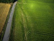 Ackerland von oben genanntem - Luftbild Lizenzfreies Stockfoto