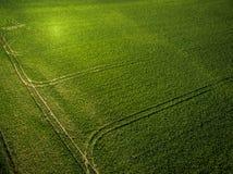 Ackerland von oben genanntem - Luftbild Stockbilder