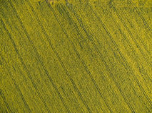 Ackerland von oben genanntem - Luftbild Stockfotos
