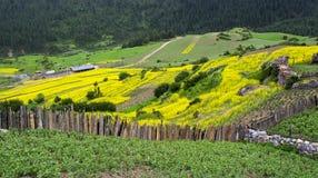 Ackerland von Zhagana Stockbilder