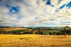 Ackerland in Yankalilla, Süd-Australien Lizenzfreie Stockfotografie