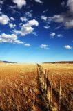 Ackerland-Zaun (Namibia) Stockfotografie