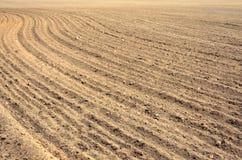 Ackerland zur Erntezeit im Ackerland Stockbild