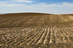 Ackerlandboden und blauer Himmel Lizenzfreie Stockbilder
