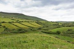Ackerlandfelder an der wilden atlantischen Weise in Irland Stockfotos