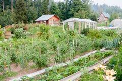 Ackerlandland vom Garten Lizenzfreie Stockbilder