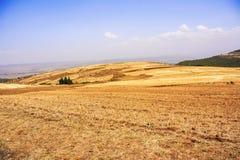 Ackerlandlandschaft in Äthiopien Lizenzfreie Stockfotos