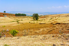 Ackerlandlandschaft in Äthiopien Stockfotos