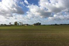 Ackerlandlandschaft in Lettland Stockfotografie