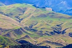 Ackerlandlandschaftsszene Hawkes Bucht Neuseeland Lizenzfreies Stockbild