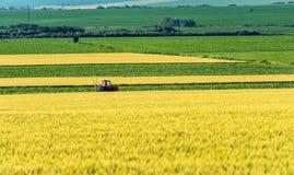 Ackerschlepper behandelt Erde auf Feld Stockfotografie