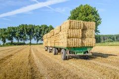 Ackerwagen völlig geladen mit angehäuften Strohballen Lizenzfreies Stockbild