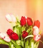 Aclare encima de su día con las flores fotos de archivo libres de regalías