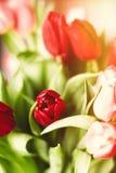 Aclare encima de su d?a con las flores foto de archivo