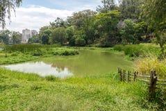 Aclimacao Park湖视图在圣保罗 免版税库存照片