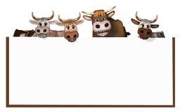Acobarda el toro del und Foto de archivo libre de regalías