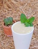 Acocado with milk royalty free stock photo