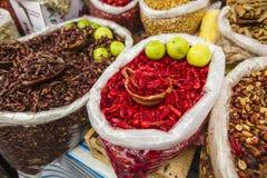 Acociles για την πώληση στην αγορά, Μεξικό Στοκ Εικόνες