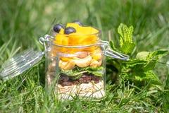 Acodado de frutas y de nueces coloridas en un tarro Concepto sano imagenes de archivo